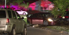 Homeowner takes out three perps during drive-by shooting